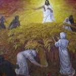 5 октября праздник Жатвы