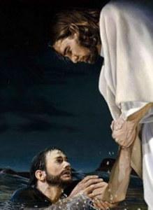 Bog-spasaet