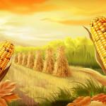 Фермер и кукуруза