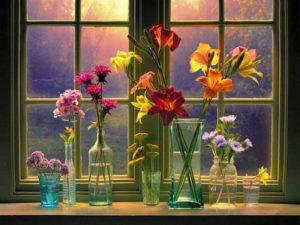 okno-s-cvetami