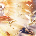 Созерцай красоту Господню